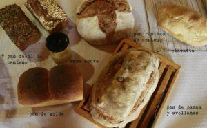 diferentes estilos de panes elaborados durante el curso de panadería